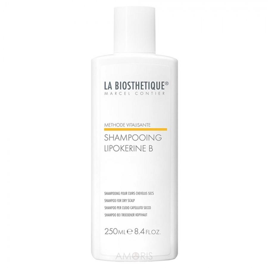 Шампунь для сухих волос и сухой кожи головы